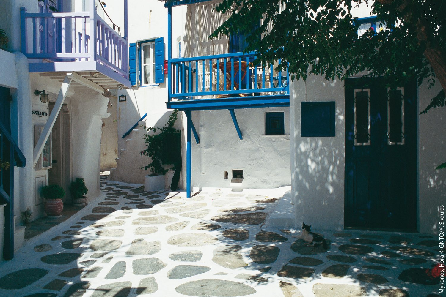 Mykonos City & Island Tour