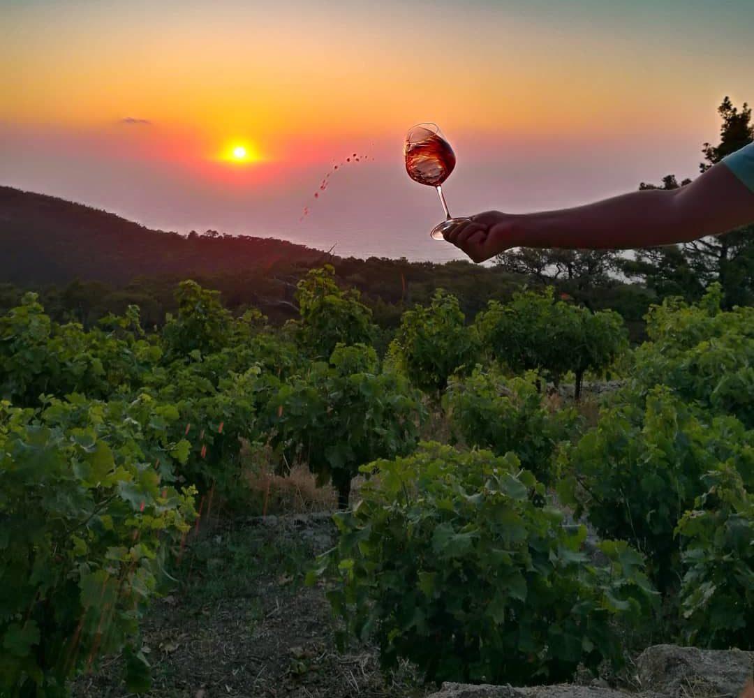 11Ikaria Wine Tasting